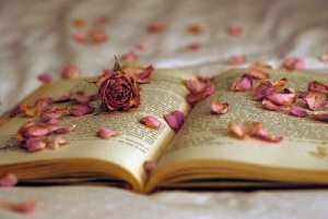 books-flowers-girly-Favim.com-339752